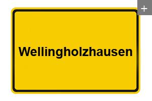 Lichtdecke auch in Wellingholzhausen
